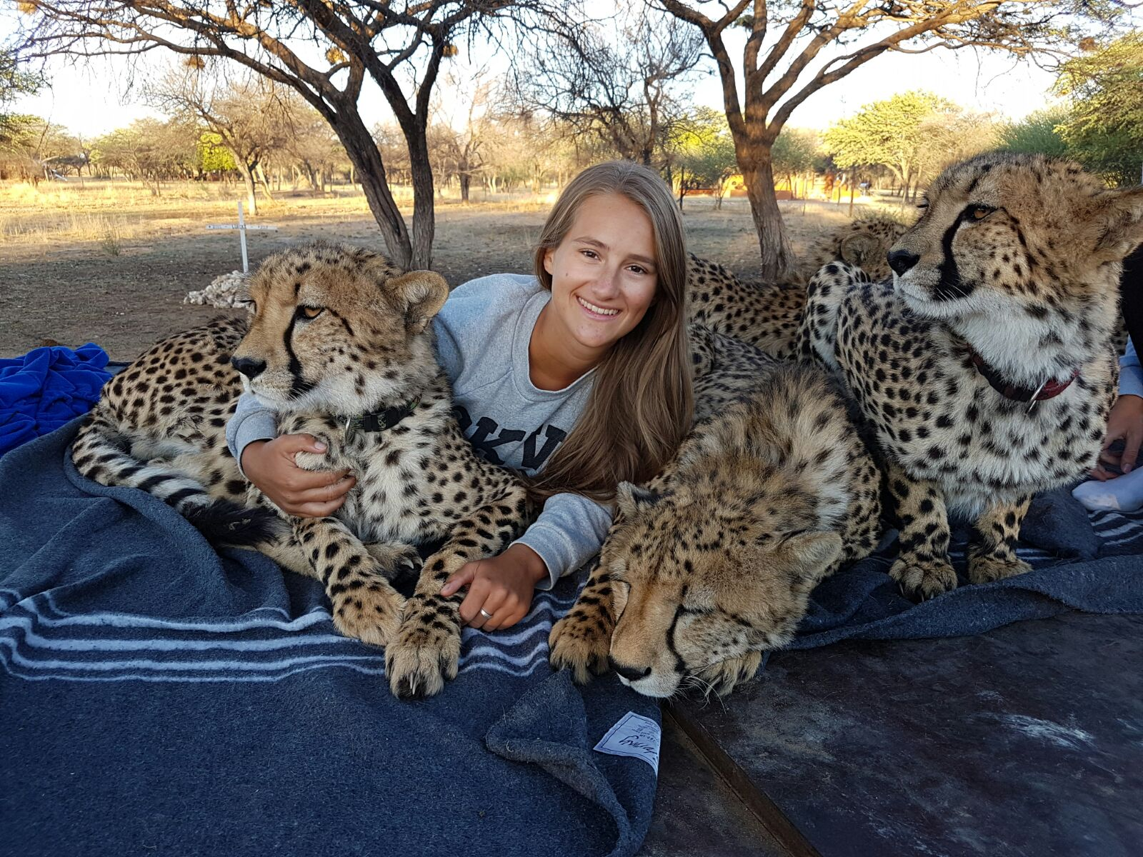 Volunteer at the Wildlife foundation program in Namibia