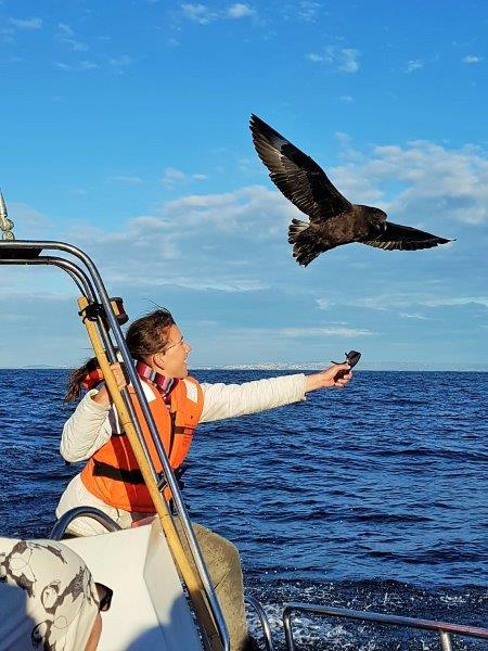 Volunteer feeding a bird during a boat trip